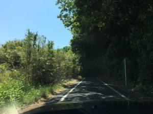 hukuroutei-route4